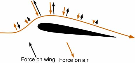 Forces on the air and the corresponding reaction forces on the wing